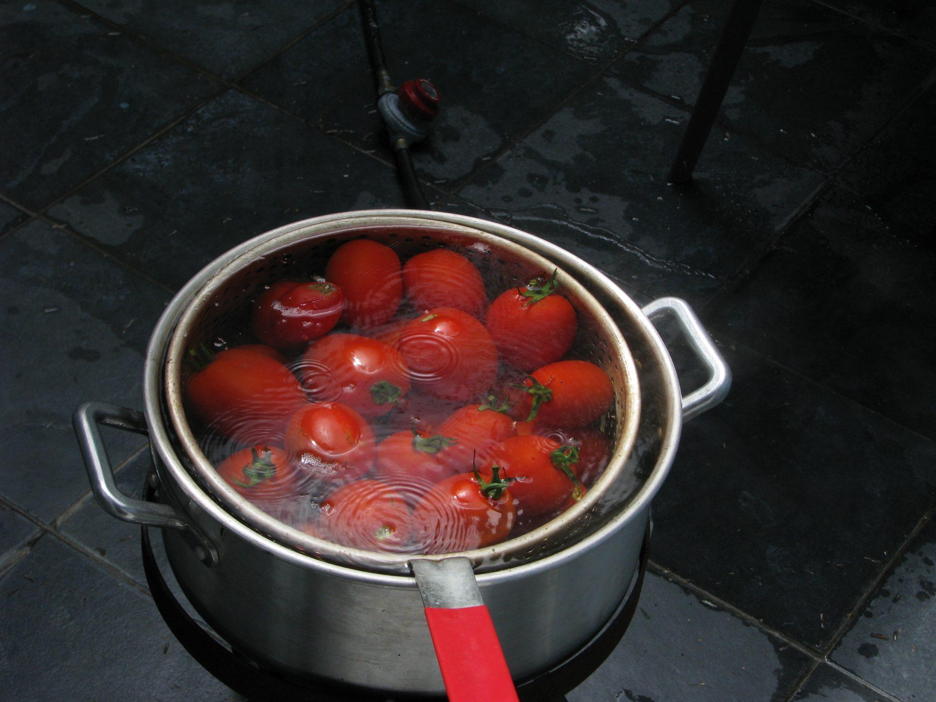 Sauce tomate la cuisine de michel for Sauce tomate cuisinee