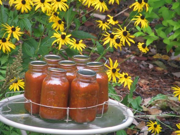 Conserves la cuisine de michel for Aubergines en conserve maison